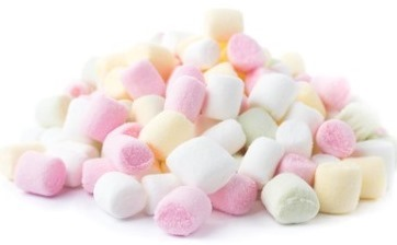 Willenskraft (Willpower) - der Marshmallow Test
